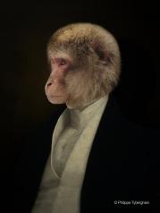 Monsieur de Humboldt