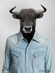 My jean shirt