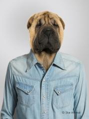 Ma chemise en jean